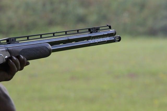 lerduer og pcp luftgevær
